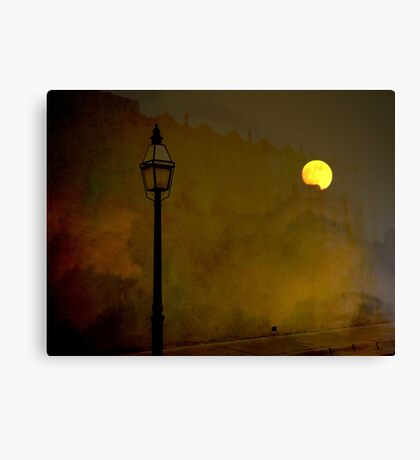 Moon Walker Canvas Print