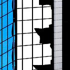 Sydney Building Reflection 59 by luvdusty