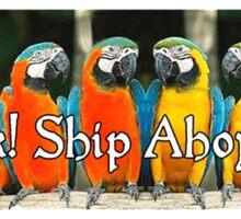 Ship Ahoy Matey! Sticker