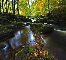 Mountain Stream  at Cloughlea. County Wicklow. Ireland by EUNAN SWEENEY
