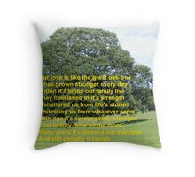 Valentine is about more than one day Throw Pillow