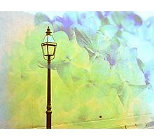Romantic Lights Photographic Print