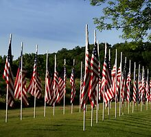 Flags of Honor by Cushman
