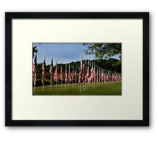 Flags of Honor Framed Print