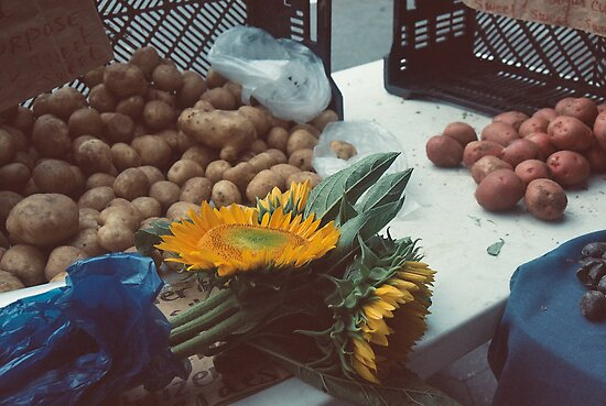 Potatoes and Point-Union Square, NYC by jessicakagansky