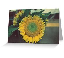 Sunflower-MTA, NYC Greeting Card