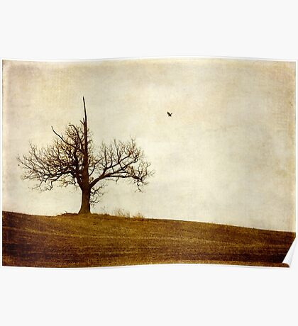Lone Tree, One Crow Poster