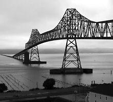 Astoria-Megler Bridge - Oregon by Barbara Burkhardt