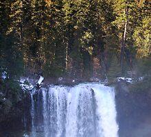 Koosah Falls by WaterInMotion