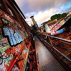Exploring the Urban Jungle by Malcolm Katon