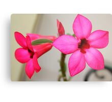 Twin Pink Tropical Floras  Metal Print