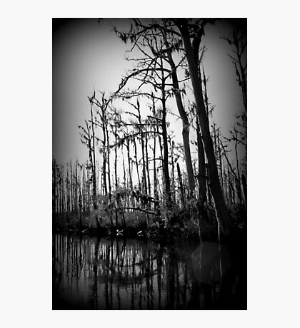 Hollow Night Photographic Print