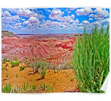 Painted Desert with Bush Poster