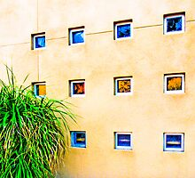 Palm Desert Wall by lckt13