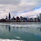 Chicago Skyline by Brian Gaynor