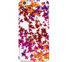 The Colors of Fall  iPhone Case/Skin