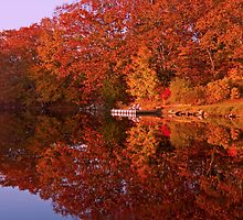 Autumn's Reflection by JoeGeraci