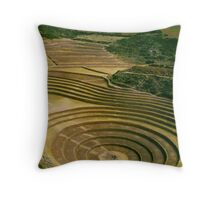Inca Laboratory Throw Pillow