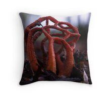 Red Basket Fungi Throw Pillow