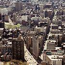 Flatiron District, New York City by mjds