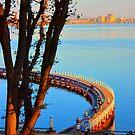 The Promenade by Ian Stevenson