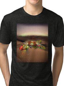 Wonderland Tri-blend T-Shirt