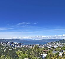 Absolutely Positively Wellington by TomRaven