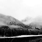 fog in the mountains of Sichuan by nicolaMY
