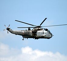 SEAKING by HALIFAXPHOTO
