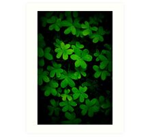 """""""Little Green"""" Art Print"""