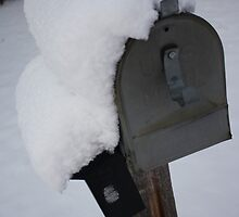 Snow Mail by Denise Tyler