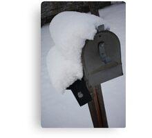 Snow Mail Canvas Print