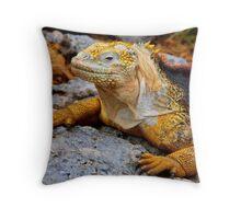 Coloured Iguana (Galapagos) Throw Pillow