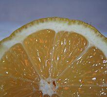 Lemon Cells by starlitewonder