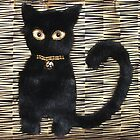 Black cat by Ilze Coombe