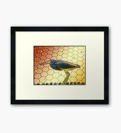Bird Ponders The Disappearing Bees Framed Print