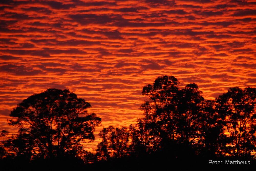 Sun set over a city suburb by Peter  Matthews