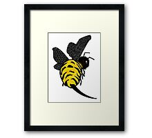Mr Sting Framed Print