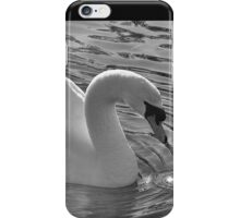 Swan iPhone Case/Skin