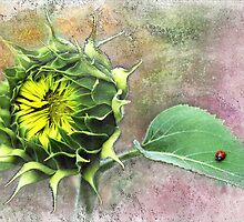 Sunflower and Ladybird. by Valentina Walker