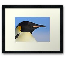 Emperor Penguin Headshot Framed Print