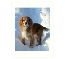paws in the snow Art Print