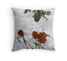 Roses and Lavender Throw Pillow