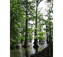 Fishing Reelfoot Lake Photographic Print