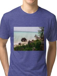 Island Paradise Tri-blend T-Shirt