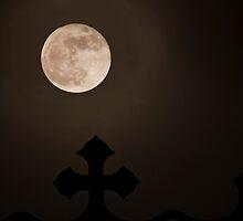 Wolf Moon by John C. Murphy