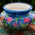 The New Collection - Ceramics by Nira Dabush