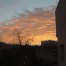 Sunrise by Ilunia Felczer