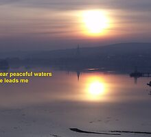 Peacful waters of the River Foyle  by Gerry  Temple
