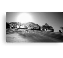 black and white winter Canvas Print